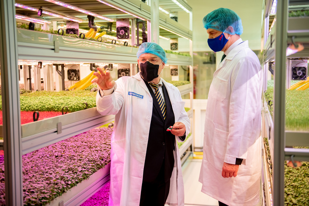 An R&D purpose vertical farm unique in Central Europe was presented in the Újpest headquarters of Tungsram